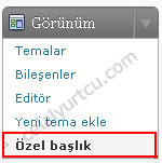 wordpress-2.9-tema-ozel-baslik1