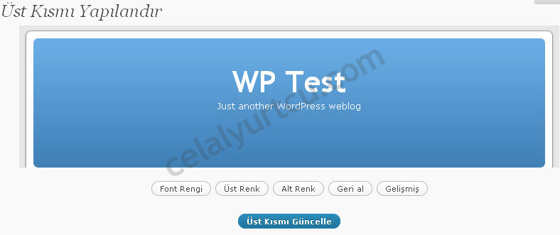 wordpress-2.9-tema-ozel-baslik2