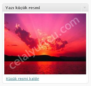 wordpress-2.9-yazi-kucuk-resim1