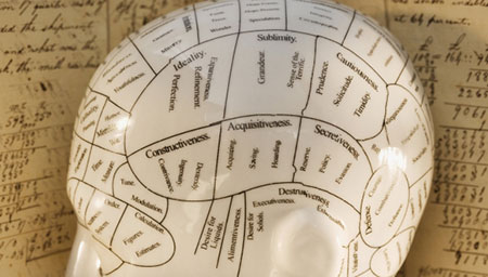 insan-beyni-haritasi