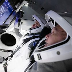 SpaceX Astronot