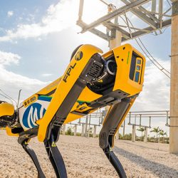 Boston Dynamics Robot Köpek Spot